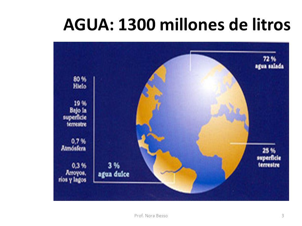 AGUA: 1300 millones de litros