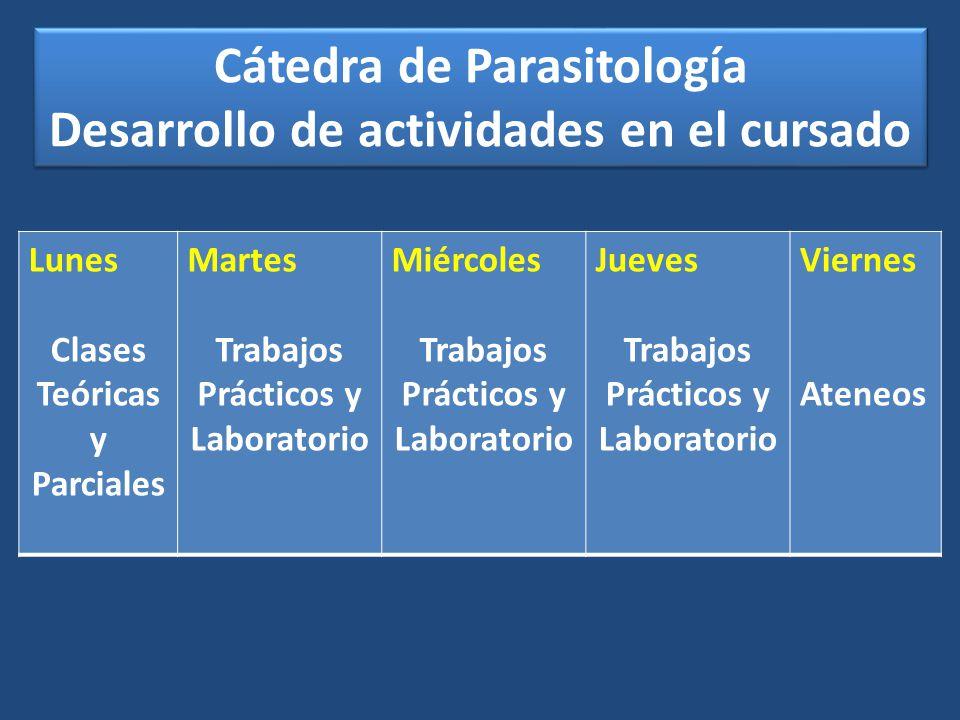 Cátedra de Parasitología Desarrollo de actividades en el cursado