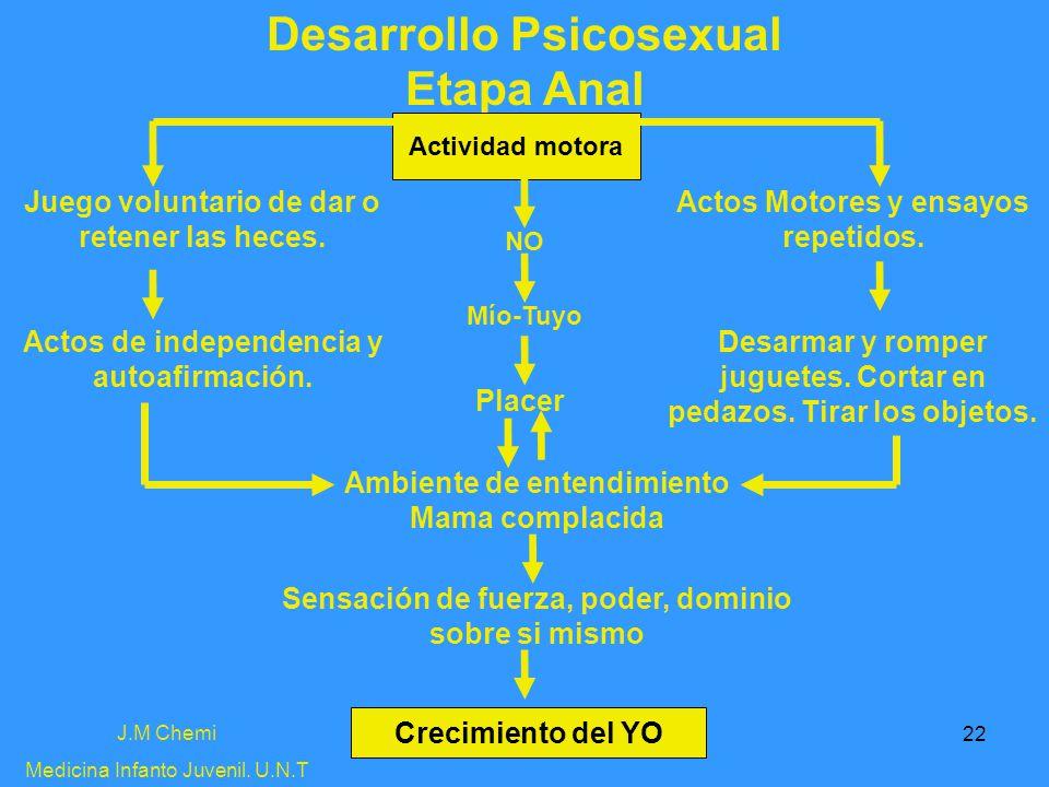 Desarrollo Psicosexual Etapa Anal