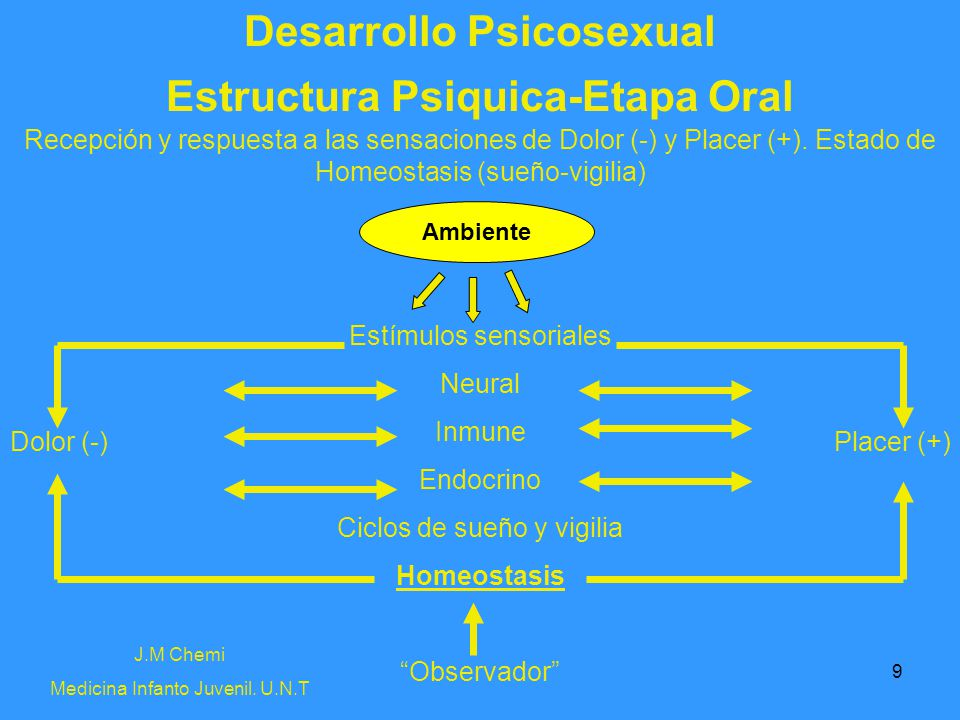 Desarrollo Psicosexual Estructura Psiquica-Etapa Oral