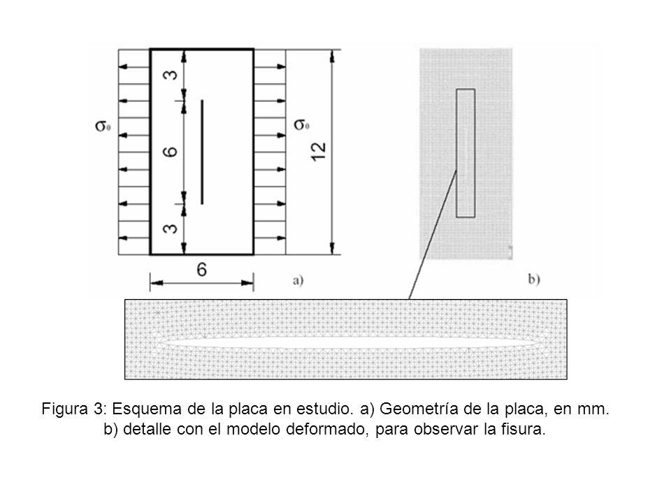 Figura 3: Esquema de la placa en estudio