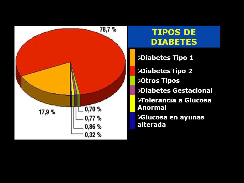 TIPOS DE DIABETES Diabetes Tipo 1 Diabetes Tipo 2 Otros Tipos