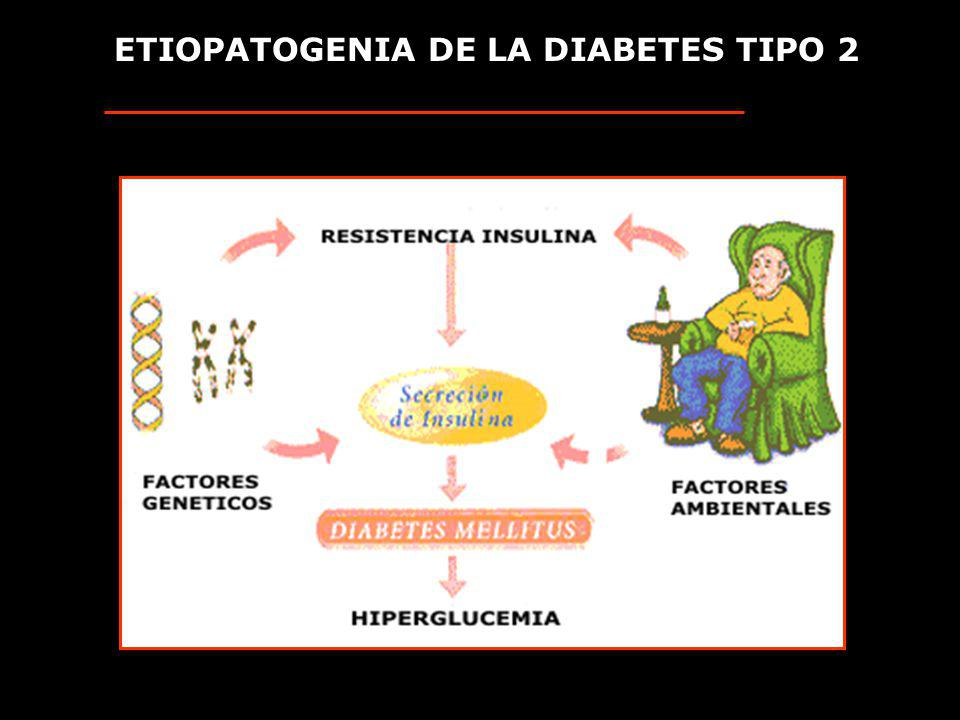 ETIOPATOGENIA DE LA DIABETES TIPO 2