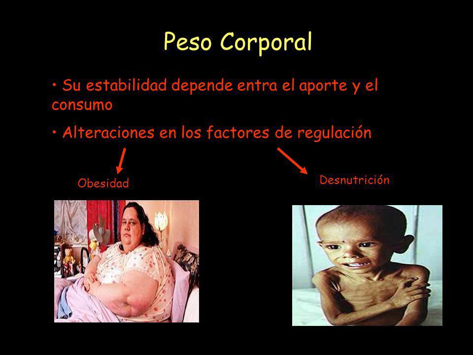 Peso Corporal Su estabilidad depende entra el aporte y el consumo