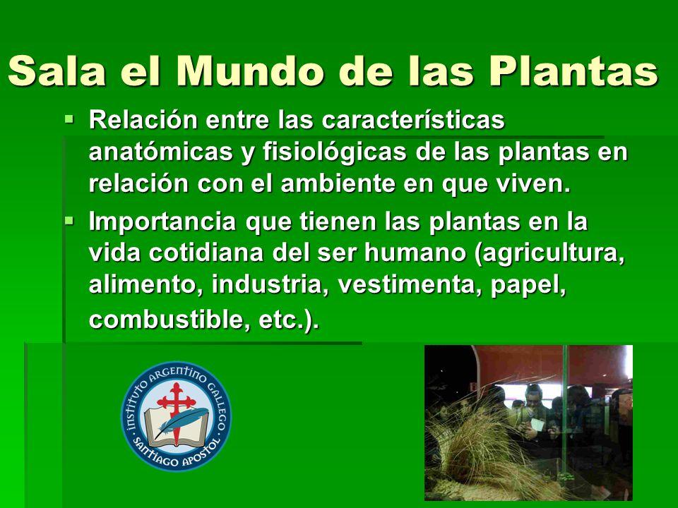 Sala el Mundo de las Plantas