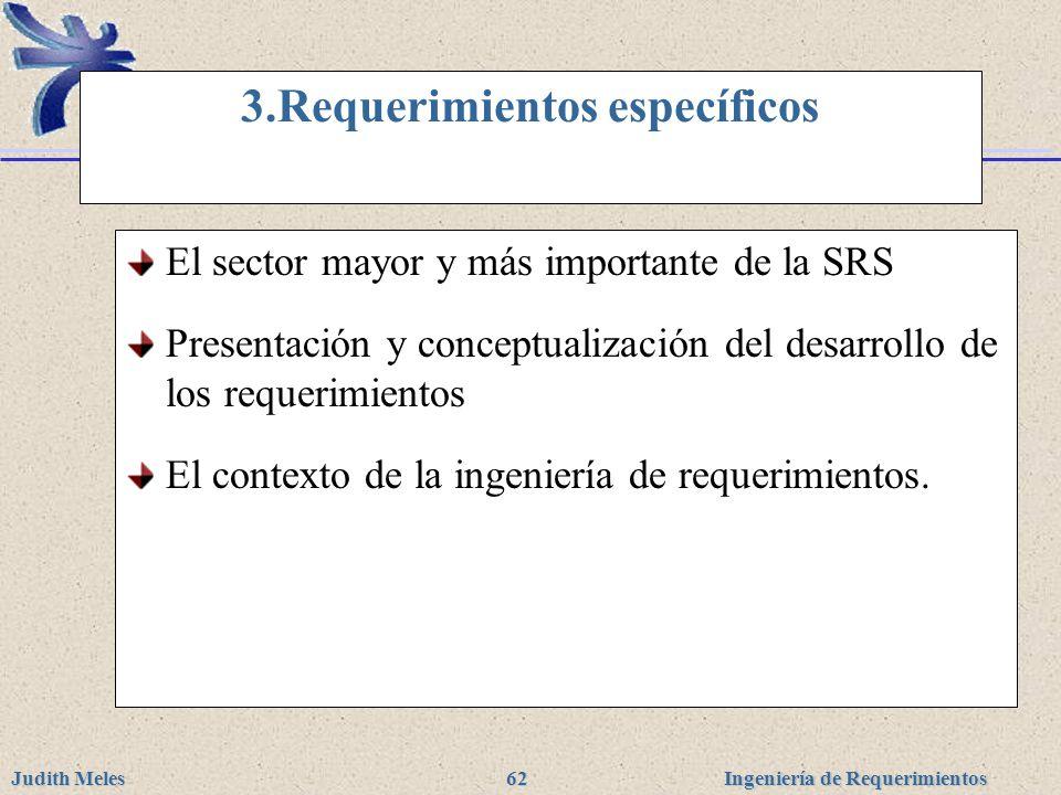 3.Requerimientos específicos