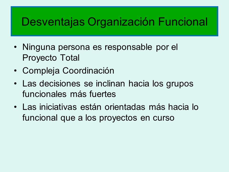 Desventajas Organización Funcional