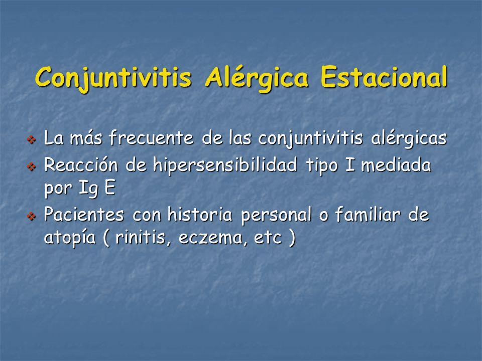 Conjuntivitis Alérgica Estacional