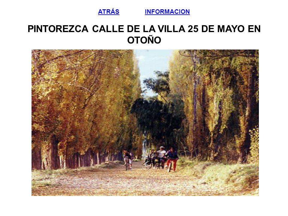 ATRÁS INFORMACION PINTOREZCA CALLE DE LA VILLA 25 DE MAYO EN OTOÑO