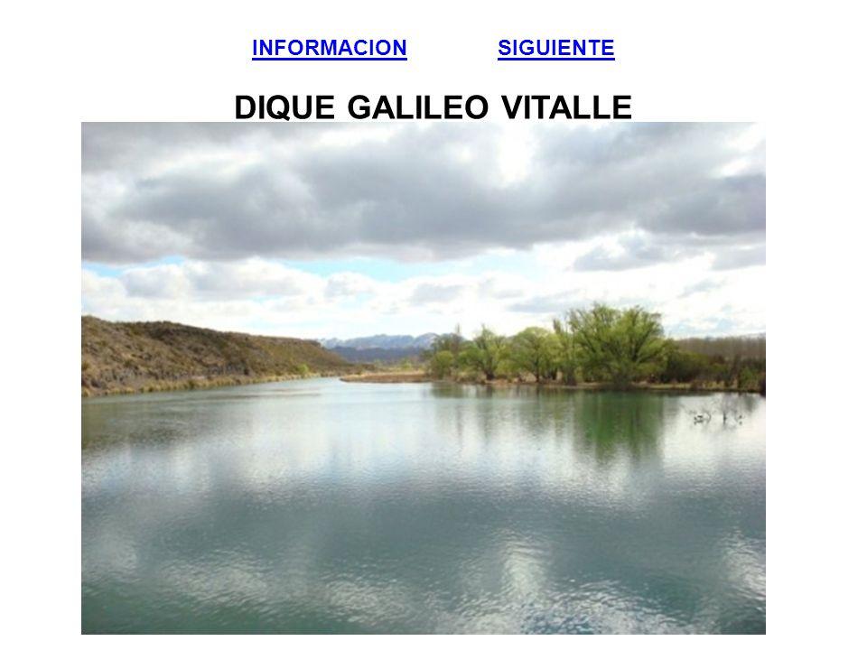 INFORMACION SIGUIENTE DIQUE GALILEO VITALLE