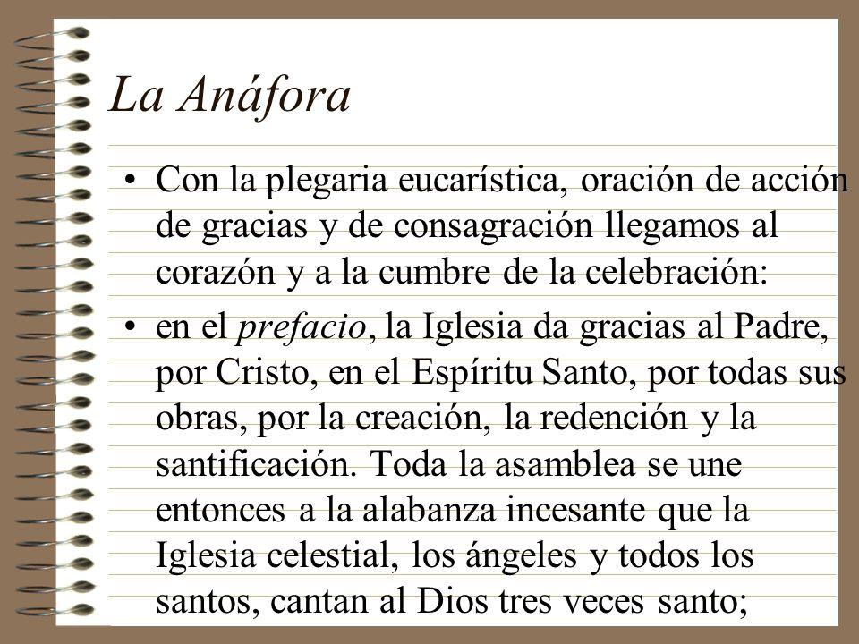 La Anáfora Con la plegaria eucarística, oración de acción de gracias y de consagración llegamos al corazón y a la cumbre de la celebración: