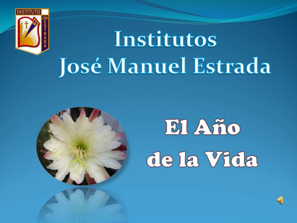 Institutos José Manuel Estrada El Año de la Vida