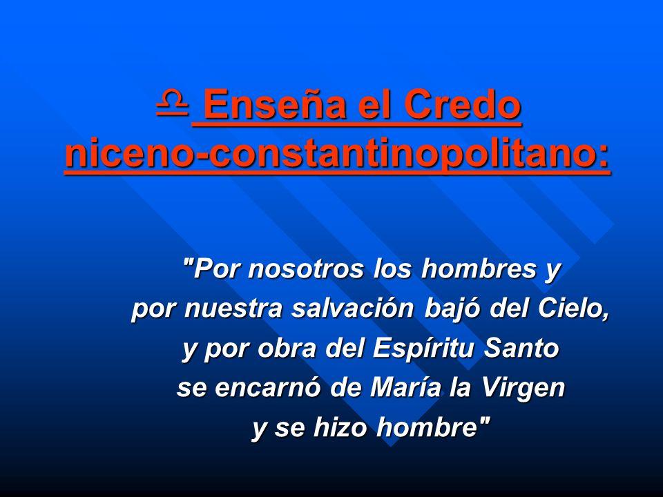 Enseña el Credo niceno-constantinopolitano: