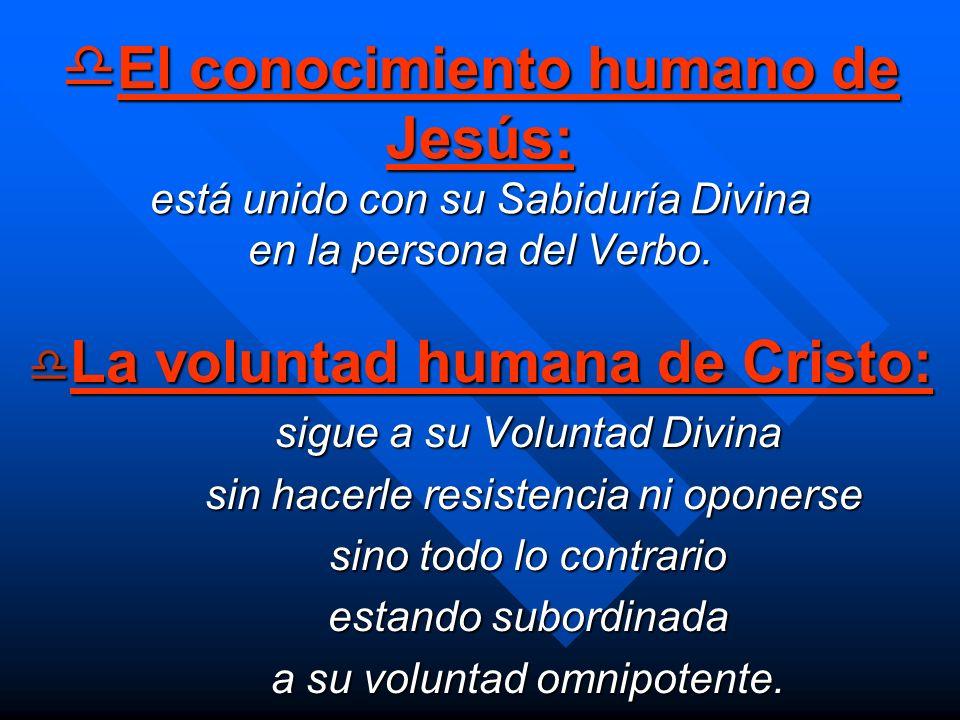 La voluntad humana de Cristo:
