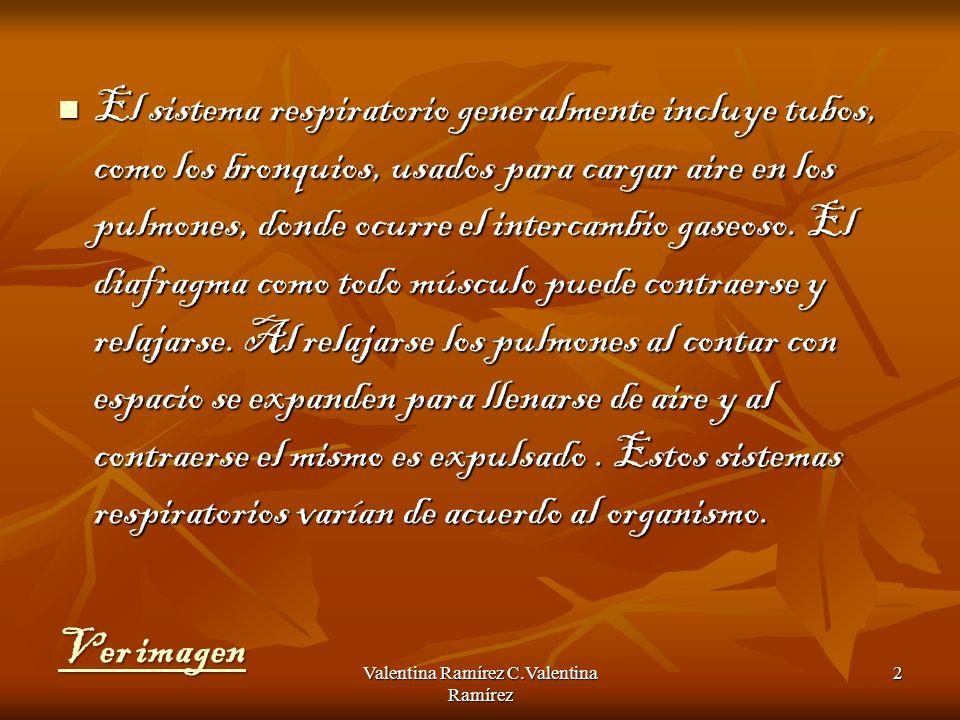 Valentina Ramírez C.Valentina Ramírez