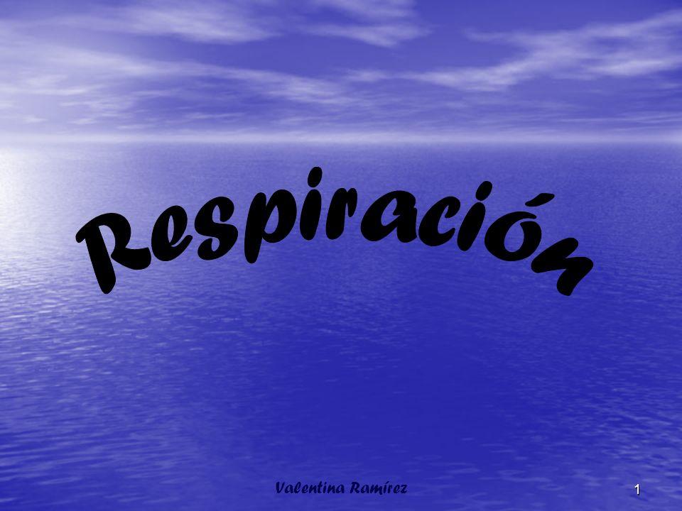 La Respiración Valentina Ramírez