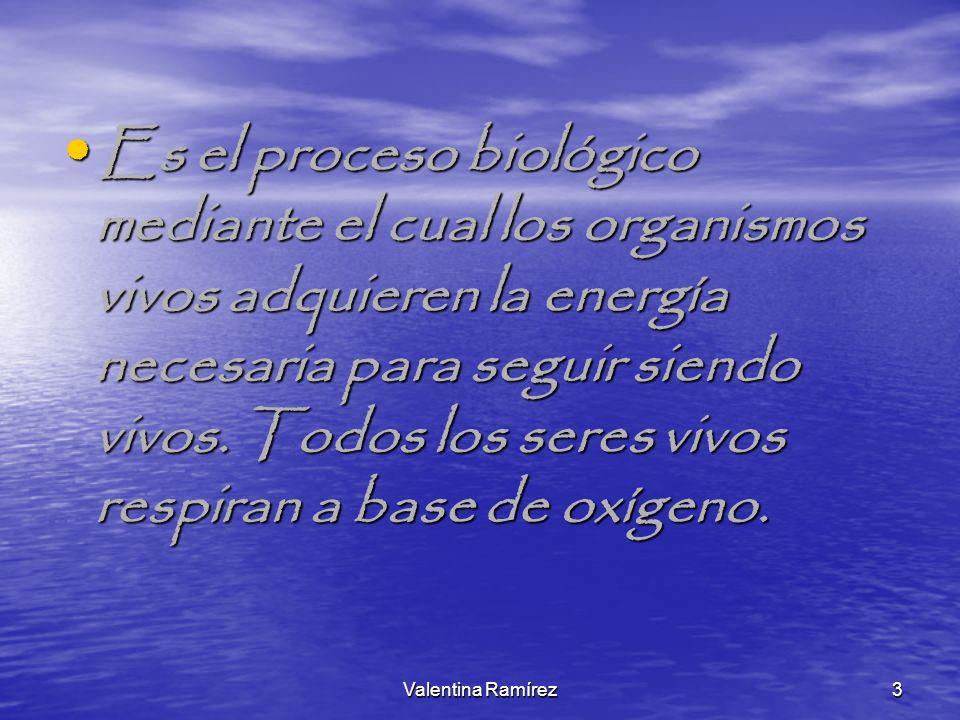 Es el proceso biológico mediante el cual los organismos vivos adquieren la energía necesaria para seguir siendo vivos. Todos los seres vivos respiran a base de oxígeno.