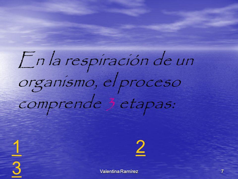 En la respiración de un organismo, el proceso comprende 3 etapas:
