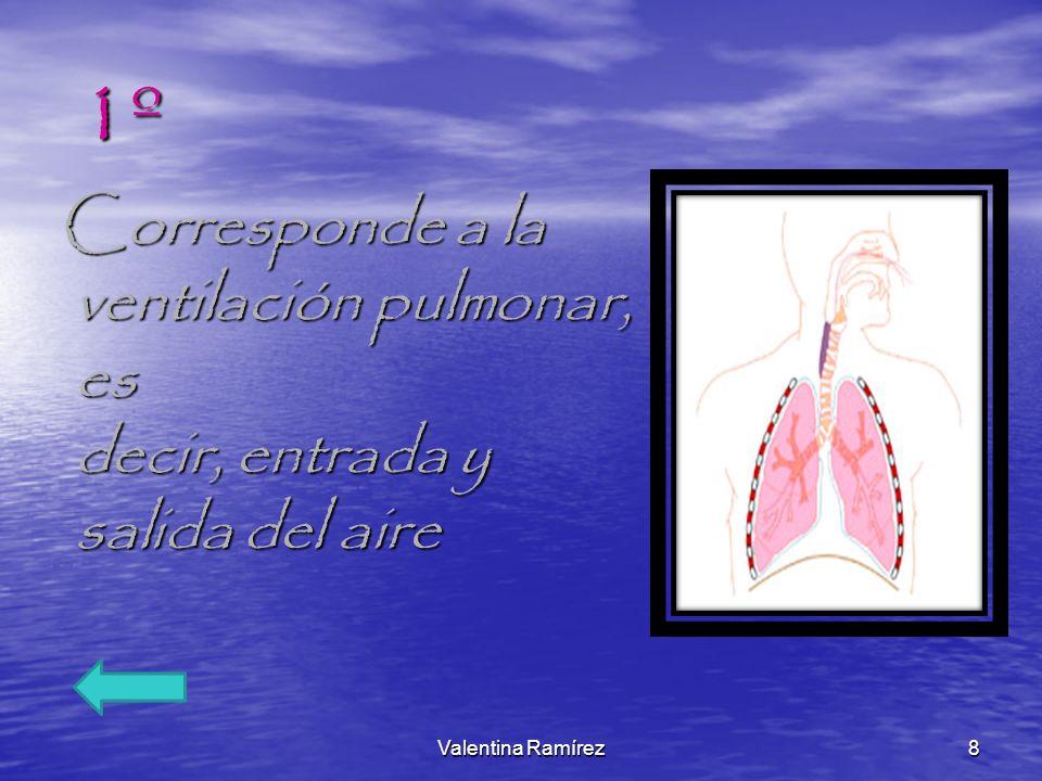 1º Corresponde a la ventilación pulmonar, es decir, entrada y salida del aire.