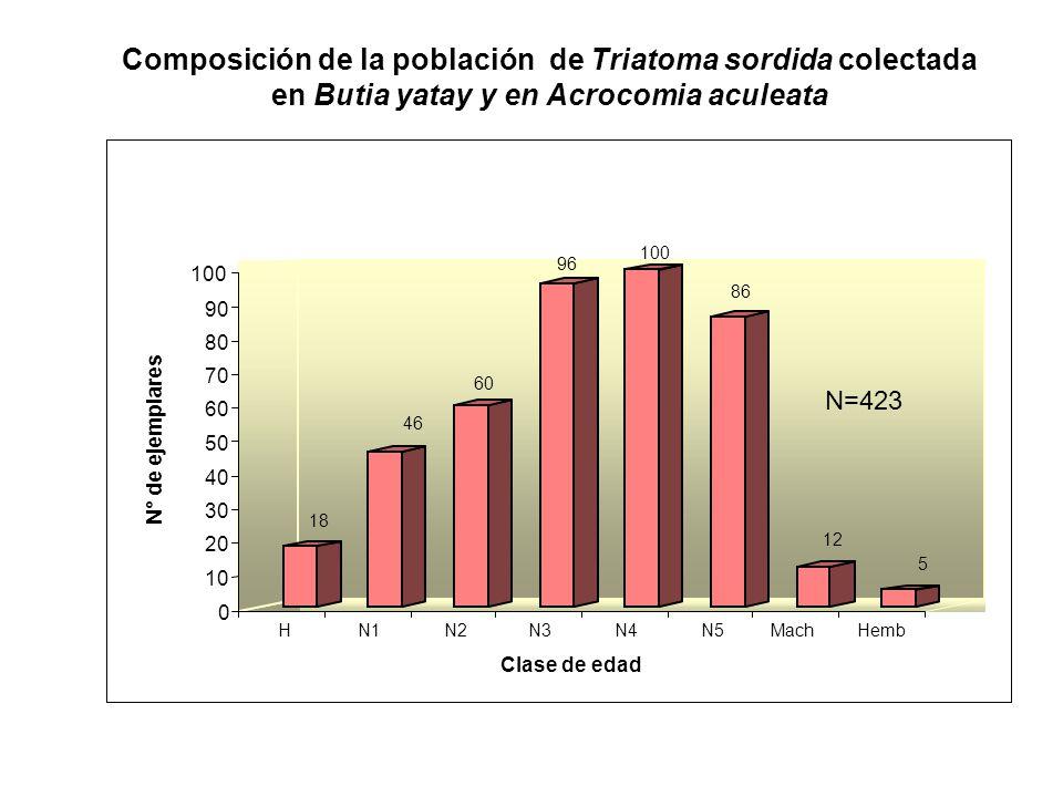 Composición de la población de Triatoma sordida colectada en Butia yatay y en Acrocomia aculeata