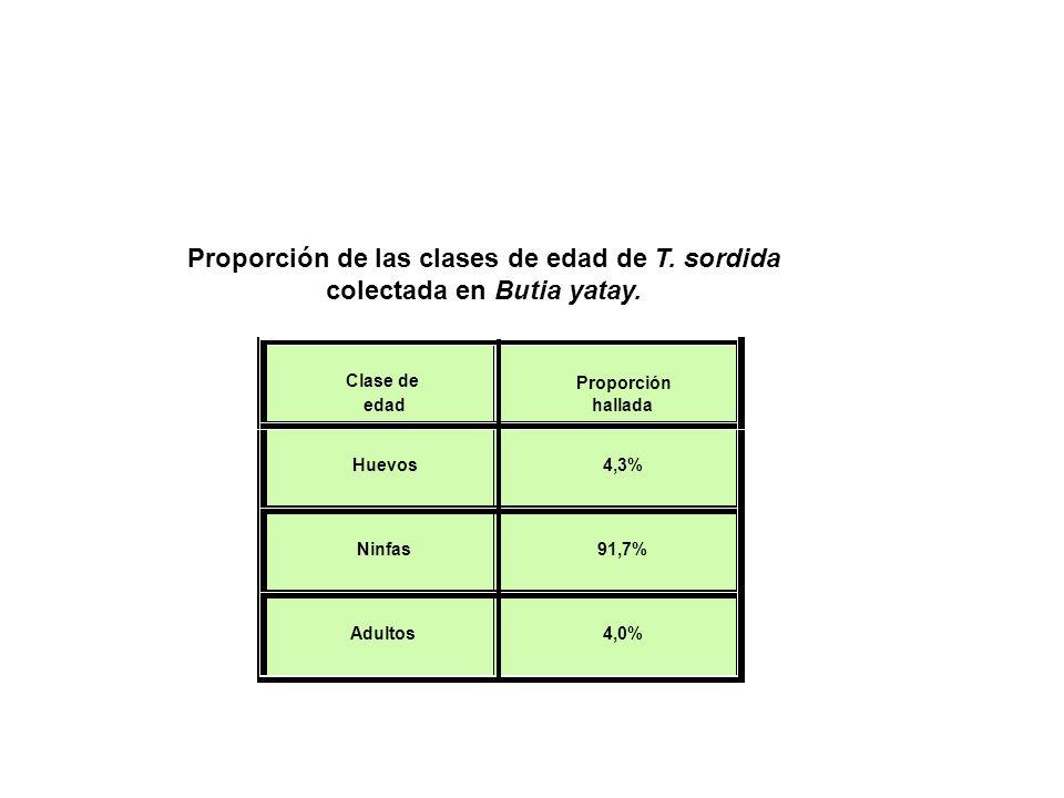 Proporción de las clases de edad de T. sordida