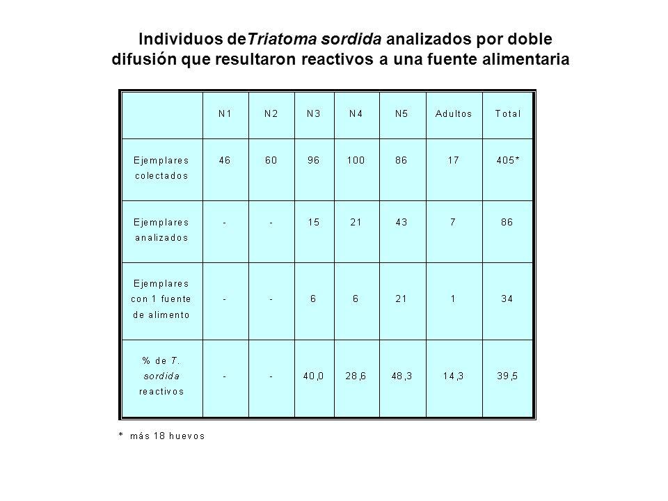 Individuos deTriatoma sordida analizados por doble