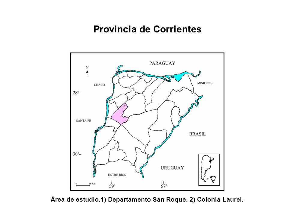 Área de estudio.1) Departamento San Roque. 2) Colonia Laurel.