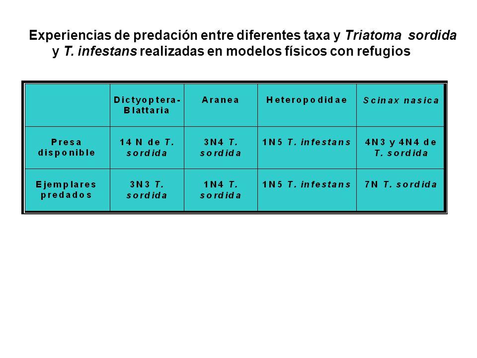 Experiencias de predación entre diferentes taxa y Triatoma sordida