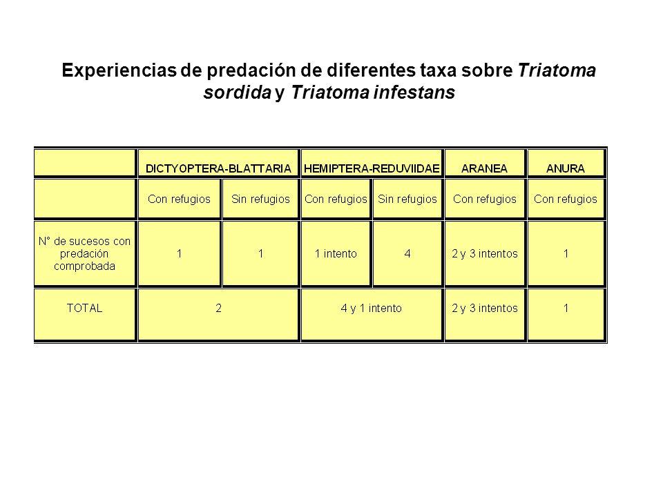 Experiencias de predación de diferentes taxa sobre Triatoma sordida y Triatoma infestans