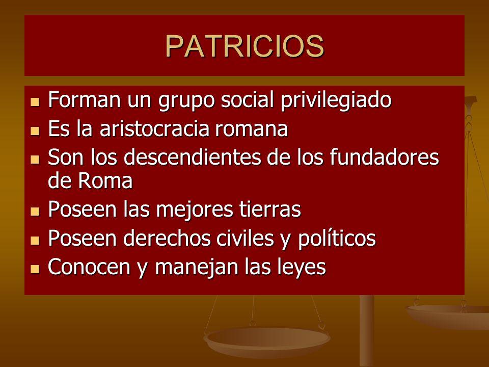 PATRICIOS Forman un grupo social privilegiado