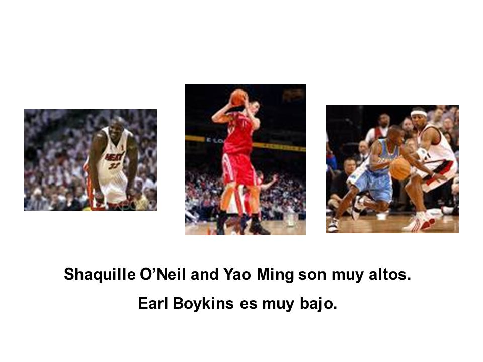 Shaquille O'Neil and Yao Ming son muy altos. Earl Boykins es muy bajo.