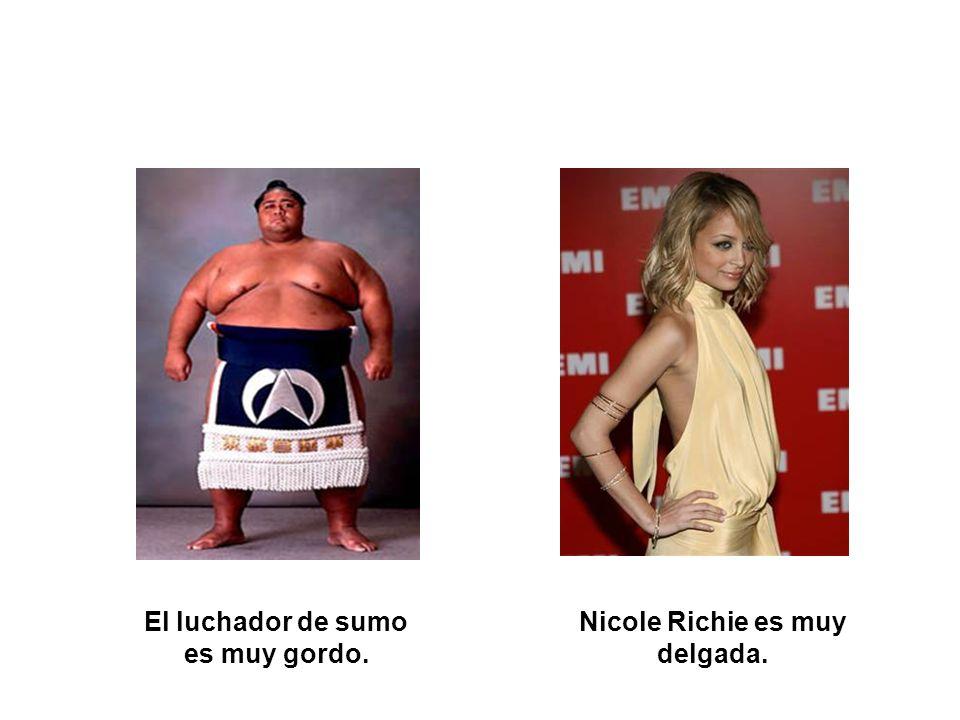 El luchador de sumo es muy gordo. Nicole Richie es muy delgada.