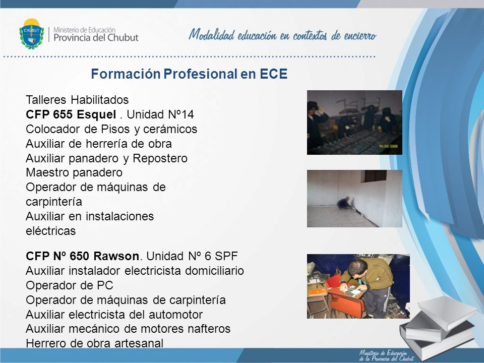 Formación Profesional en ECE