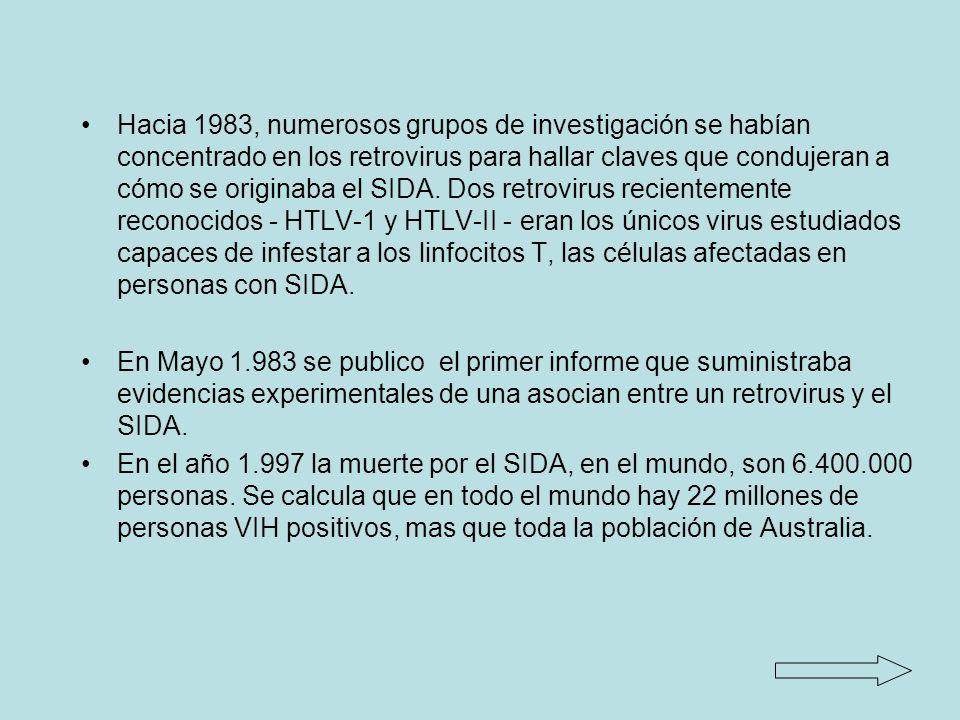 Hacia 1983, numerosos grupos de investigación se habían concentrado en los retrovirus para hallar claves que condujeran a cómo se originaba el SIDA. Dos retrovirus recientemente reconocidos - HTLV-1 y HTLV-II - eran los únicos virus estudiados capaces de infestar a los linfocitos T, las células afectadas en personas con SIDA.