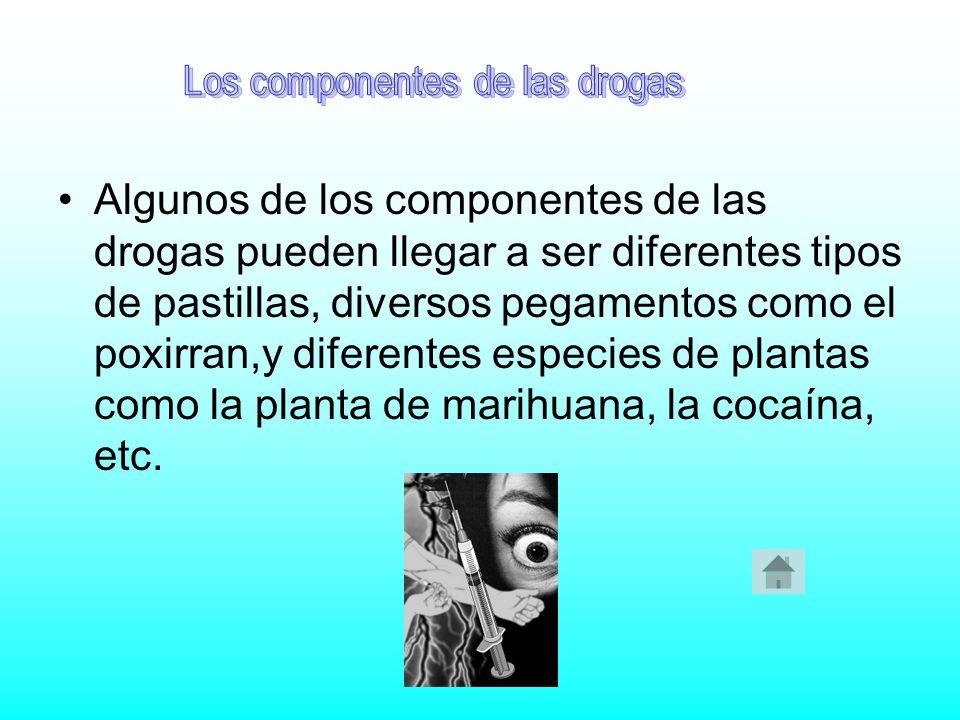 Los componentes de las drogas