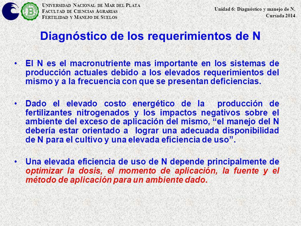 Diagnóstico de los requerimientos de N