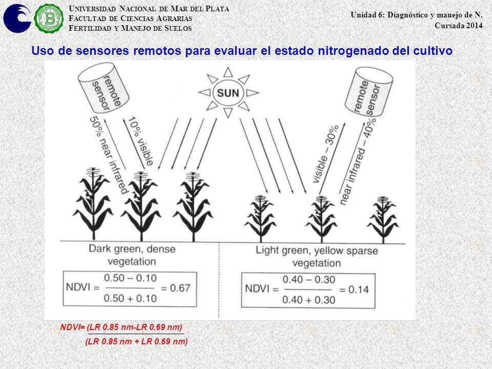 Uso de sensores remotos para evaluar el estado nitrogenado del cultivo