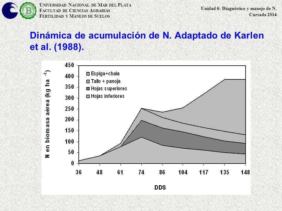 Dinámica de acumulación de N. Adaptado de Karlen et al. (1988).