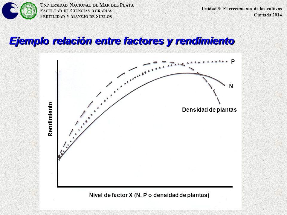 Ejemplo relación entre factores y rendimiento