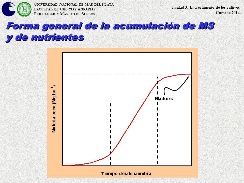 Forma general de la acumulación de MS y de nutrientes