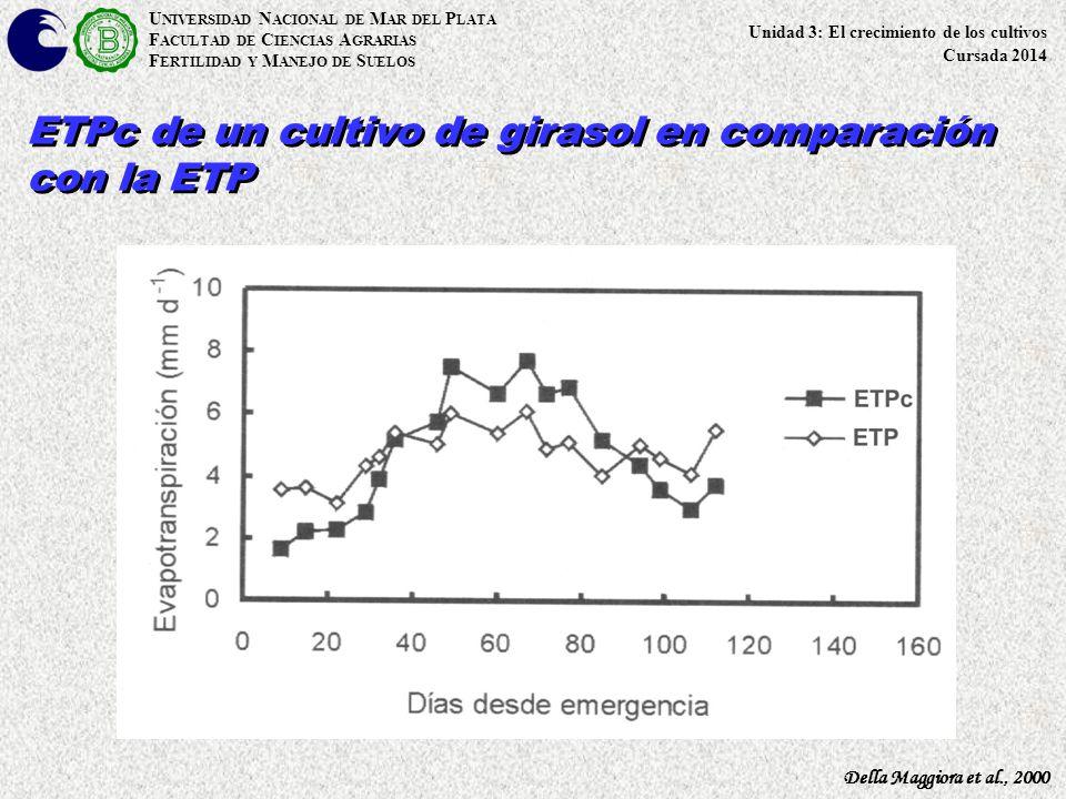 ETPc de un cultivo de girasol en comparación con la ETP