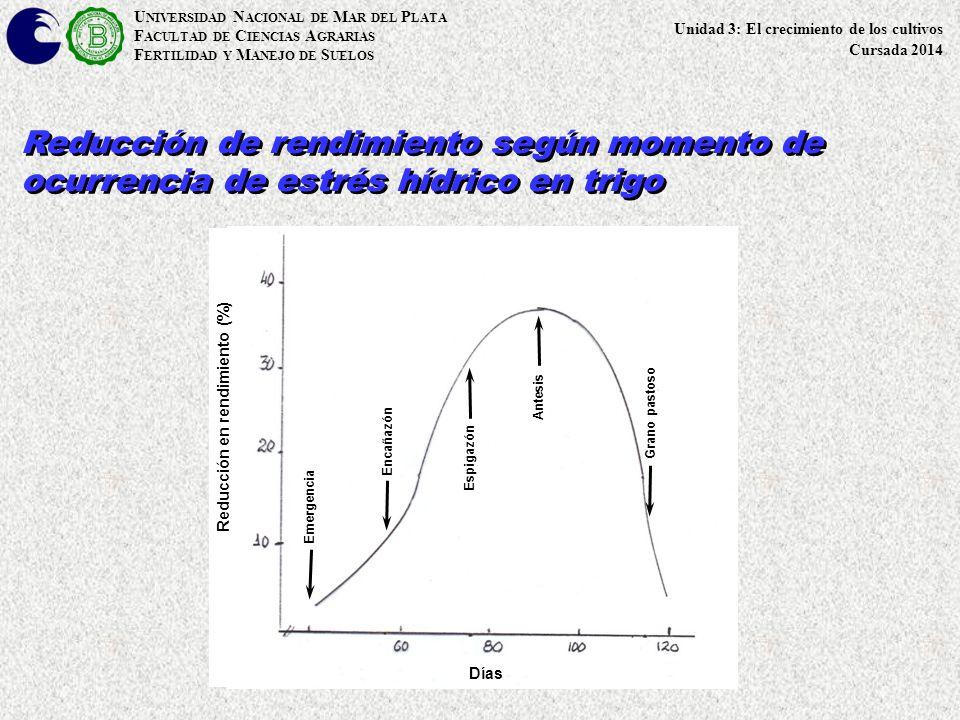 Reducción en rendimiento (%)