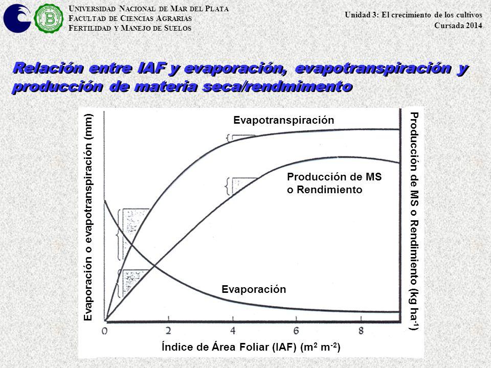 Evaporación o evapotranspiración (mm)