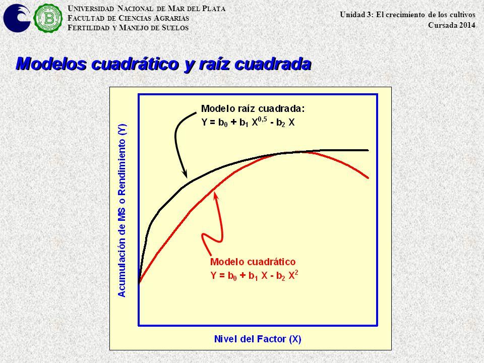 Modelos cuadrático y raíz cuadrada