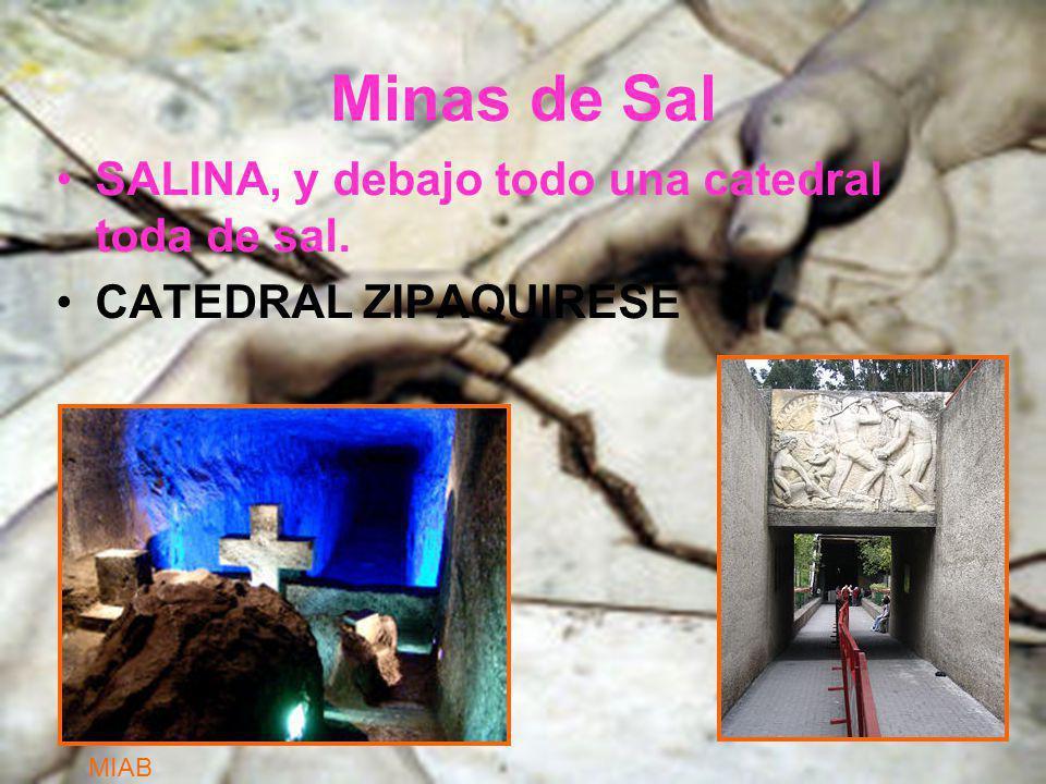 Minas de Sal SALINA, y debajo todo una catedral toda de sal.