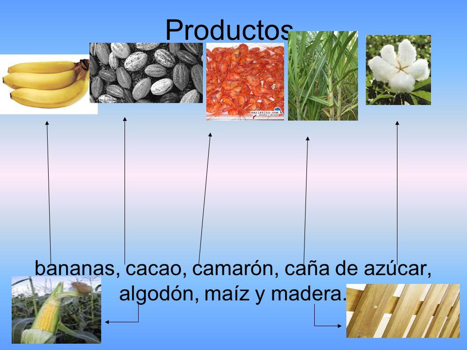 bananas, cacao, camarón, caña de azúcar, algodón, maíz y madera.