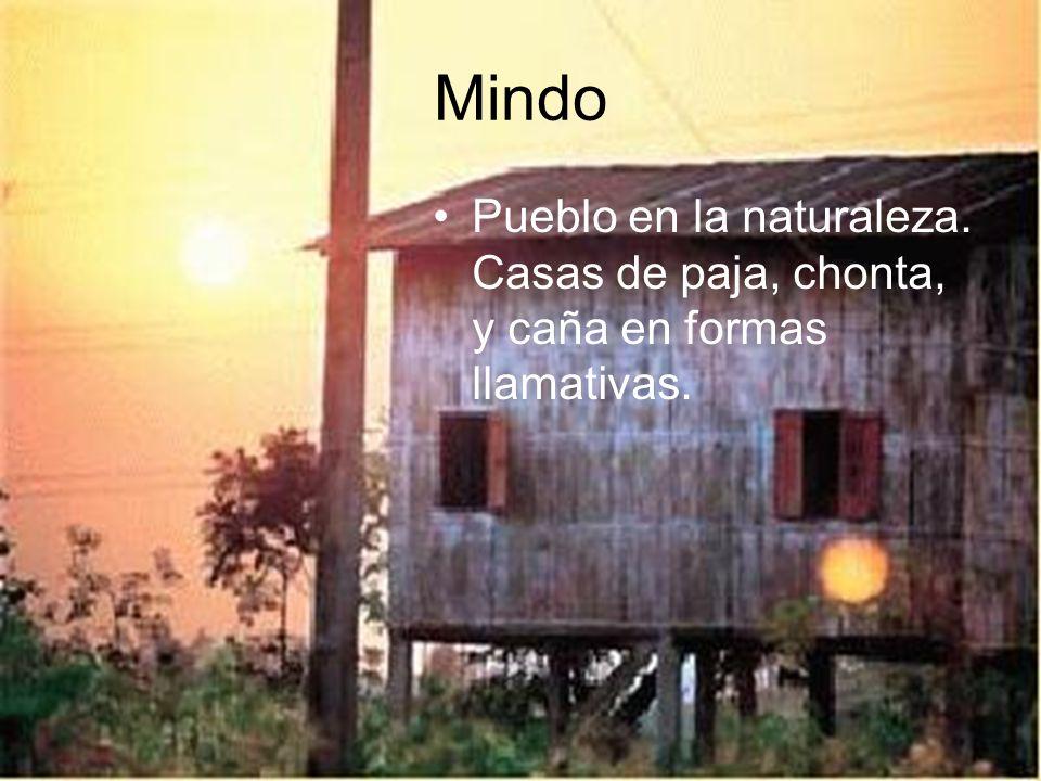 Mindo Pueblo en la naturaleza. Casas de paja, chonta, y caña en formas llamativas.
