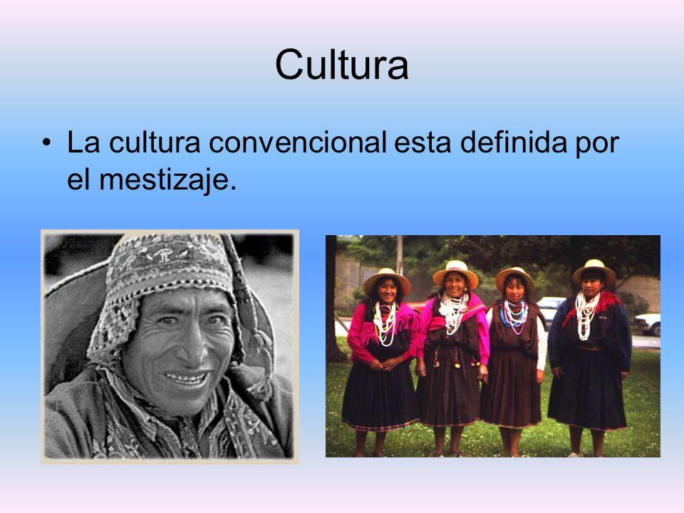 Cultura La cultura convencional esta definida por el mestizaje.