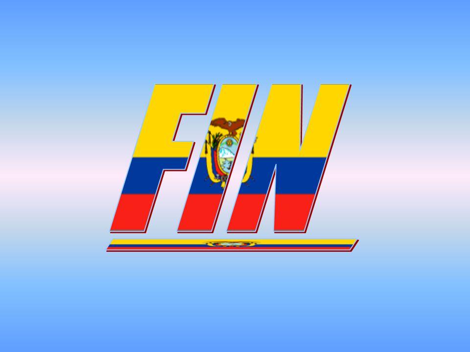 FIN _