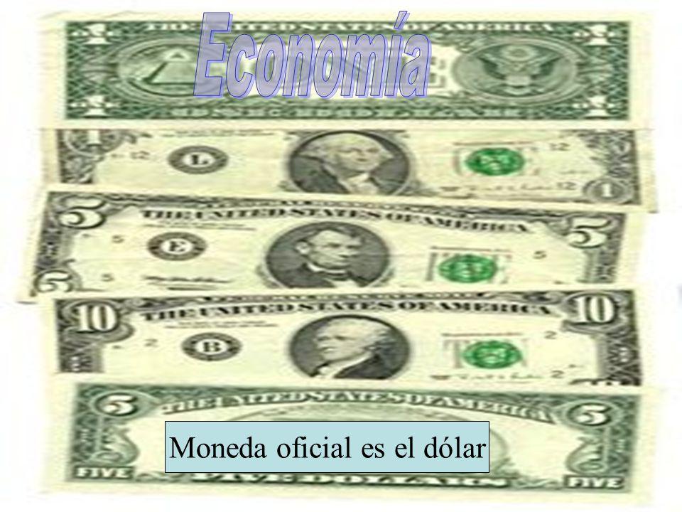 Moneda oficial es el dólar